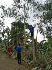 Đoàn xã Tam Thành phối hợp triển khai lắp đặt tuyến đường điện chiếu sáng